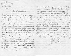 Brief vanuit Hamdorff aan Nellepietje mogelijk 1902